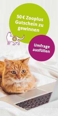 Zooplus Gutschein gewinnen